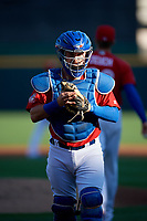 Buffalo Bisons catcher Reese McGuire (7) during an International League game against the Norfolk Tides on June 22, 2019 at Sahlen Field in Buffalo, New York.  Buffalo defeated Norfolk 3-0.  (Mike Janes/Four Seam Images)
