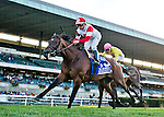 September 26, 2015 : Big Blue Kitten, ridden Joe Bravo, wins the Joe Hirsch Turf Classic Stakes in a course record time on on Turf Classic Day at Belmont Park in Elmont, NY. Scott Serio/ESW/CSM