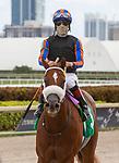 January 30, 2021:  Drain The Clock with jockey Edgard Zayas on board, wins the Claiborne Farm Swale GIII Stakes at Gulfstream Park in Hallandale Beach, Florida. LizLamont/Eclipse Sportswire/CSM
