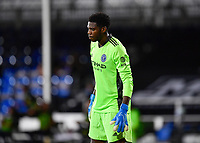 LAKE BUENA VISTA, FL - AUGUST 01: Sean Johnson #1 of New York City FC during a game between Portland Timbers and New York City FC at ESPN Wide World of Sports on August 01, 2020 in Lake Buena Vista, Florida.