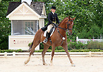 10 July 2009: Ellie Sulentic riding Dolphin Square during the dressage phase of the CIC 2* Maui Jim Horse Trials at Lamplight Equestrian Center in Wayne, Illinois.
