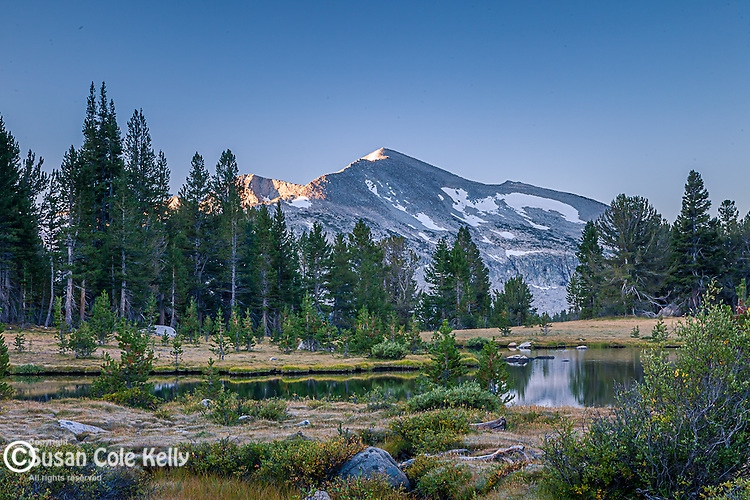 Sierran high country on the Tioga Road, Yosemite National Park, CA, USA