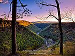 Pine Creek Gorge near Barbour Rock, Pennsylvania