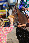Holiday Broad after winning at Gulfstream Park, Hallandale Beach Florida.