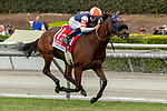 """ARCADIA, CA  SEPTEMBER 28:  <br /> #1 Mirth, ridden by Mike Smith, in the stretch of the Rodeo Drive Stakes (Grade l) """"Win and You're Breeders' Cup Filly and Mare Turf Division"""" on September 28, 2019 at Santa Anita Park in Arcadia, CA. (Photo by Casey Phillips/Eclipse Sportswire/CSM)"""