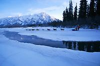S King Crosses Open Water S Kuskokwim Rv Iditarod 99 AK Near Rohn Night