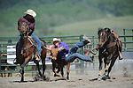 VHSRA - Fairfield, VA -  5.17.2015 - Steer Wrestling