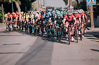 Markel Irizar (ESP/Trek-Segafredo): the peloton's locomotive leading out his sprint-train<br /> <br /> 27th Challenge Ciclista Mallorca 2018<br /> Trofeo Campos-Porreres-Felanitx-Ses Salines: 176km