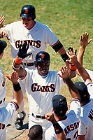 SAN FRANCISCO, CA:  Matt Williams and Barry Bonds of the San Francisco Giants celebrate with their teammates during a game against the Philadelphia Phillies at Candlestick Park in San Francisco, California on July 24, 1993. (Photo by Brad Mangin)