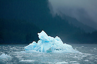 Iceberg floating in Columbia Bay, Prince William Sound, Chugach National Forest, Alaska.