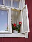 Flowers in Window on Island of Kökar, Åland, Finland