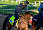 April 27, 2021: Hot Rod Charlie, trained by trainer Doug O'Neill, exercises in preparation for the Kentucky Derby at Churchill Downs on April 27, 2021 in Louisville, Kentucky. John Voorhees/Eclipse Sportswire/CSM