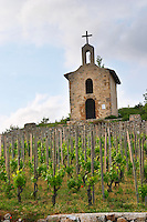 syrah The la chapelle chapel vineyard hermitage rhone france