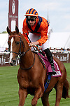 October 02, 2016, Chantilly, FRANCE - Kontrastat with Theo Bachelot up at the Qatar Prix Jean-Luc Lagardere (Grand Criterium) (Gr. I) at  Chantilly Race Course  [Copyright (c) Sandra Scherning/Eclipse Sportswire)