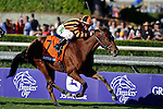 Nov. 03, 2012 - Arcadia, California, U.S - Little Mike (FL)ridden by Ramon A. Dominguez and trained by (Trainer), wins the Breeders' Cup Turf Dale Romans at Santa Anita Park in Arcadia, CA. (Credit Image: © Ryan Lasek/Eclipse/ZUMAPRESS.com)