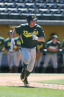 Nick Catalano (7) of the Oregon Ducks runs to first base during a game against the Southern California Trojans at Dedeaux Field on April 18, 2015 in Los Angeles, California. Oregon defeated Southern California, 15-4. (Larry Goren/Four Seam Images)