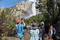 Touristen fotografieren den Yosemite Wasserfall im Yosemite National Park.<br /> 3.6.2017, Yosemite National Park<br /> Copyright: Christian-Ditsch.de<br /> [Inhaltsveraendernde Manipulation des Fotos nur nach ausdruecklicher Genehmigung des Fotografen. Vereinbarungen ueber Abtretung von Persoenlichkeitsrechten/Model Release der abgebildeten Person/Personen liegen nicht vor. NO MODEL RELEASE! Nur fuer Redaktionelle Zwecke. Don't publish without copyright Christian-Ditsch.de, Veroeffentlichung nur mit Fotografennennung, sowie gegen Honorar, MwSt. und Beleg. Konto: I N G - D i B a, IBAN DE58500105175400192269, BIC INGDDEFFXXX, Kontakt: post@christian-ditsch.de<br /> Bei der Bearbeitung der Dateiinformationen darf die Urheberkennzeichnung in den EXIF- und  IPTC-Daten nicht entfernt werden, diese sind in digitalen Medien nach §95c UrhG rechtlich geschuetzt. Der Urhebervermerk wird gemaess §13 UrhG verlangt.]