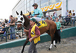 09 May 15: Jockey Kent Desomeaux and Stone Legacy enter the track prior to the grade 3 Black-Eyed Susan Stakes at Pimlico Race Track in Baltimore, Maryland.