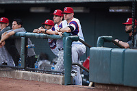 Winston-Salem Rayados manager Ryan Newman (29) watches from the dugout during the game against the Llamas de Hickory at Truist Stadium on July 6, 2021 in Winston-Salem, North Carolina. (Brian Westerholt/Four Seam Images)