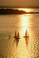 Sailing aerial, Quincy bay
