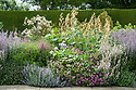 Mixed herbaceous border containing Macleaya cordata (Plume Poppy), Nepeta, Geraniums and Salvia, Town Place, late June.