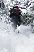 Hikers snowshoeing on the Willey Range Trail in the White Mountains, New Hampshire USA during the winter months.