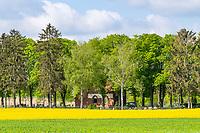 Friedhof und Kapelle mit blühendem Rapsfeld, Marwitz, Oberkrämer, Oberhavel, Havelland, Brandenburg, Deutschland