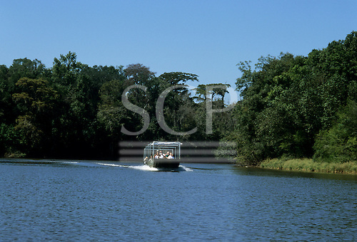Louisiana, USA. Rectangular, green boat carrying tourists through the bayou with trees on both sides.