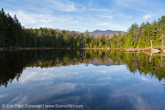 Black Pond on the side of Black Pond Trail in Lincoln, New Hampshire. Bondcliff is off in the distance. This forest was logged during the East Branch & Lincoln Railroad era (1893-1948).