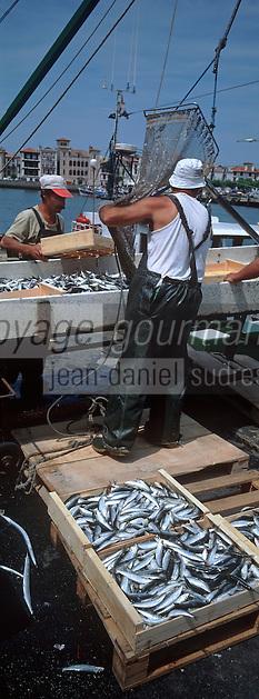 Europe/France/Aquitaine/64/Pyrénées-Atlantiques/Ciboure: retour de péche  à l'anchois au Port de Saint-Jean-de-Luz