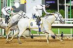 February 20, 2021: MUBASHER ALKHALEDIAH #6 ridden by A. Flfouraidi wins The Obaiya Arabian Classic for M. Mashef on Saudi Cup Day, King Abdulaziz Racecourse, Riyadh, Saudi Arabia. Shamela Hanley/Eclipse Sportswire/CSM