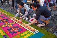 Antigua, Guatemala. Using a stencil to put the finishing touches on an alfombra (carpet) of colored sawdust to decorate the street in advance of the passage of a procession during Holy Week, La Semana Santa.  The alfombra will be finished only a couple of hours before the passage of the procession, after which the remains will be quickly swept away by municipal street sweepers.