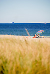 Sea grasses hold the dunes along the beach at Rehoboth Beach, Delaware.  © Rick Collier