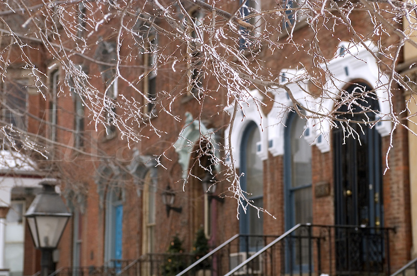 Brownstones with tree branches covered with ice. prospecct Avenue, Cleveland, Ohio.