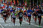 New York City Marathon 2013