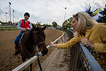 LOUISVILLE, KY - MAY 02: A fan reaches over the railing to feed a horse a peppermint during workouts at Churchill Downs on May 2, 2018 in Louisville, Kentucky. (Photo by Alex Evers/Eclipse Sportswire/Getty Images)