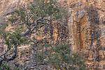 Kenya, Chyulu Hills National Park,