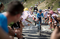 Nairo Quintana (COL/Movistar) up the Tourmalet (HC/2115m/19km @7.4%)<br /> <br /> Stage 14: Tarbes to Tourmalet (117km)<br /> 106th Tour de France 2019 (2.UWT)<br /> <br /> ©kramon