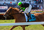 February 29, 2020: #9 Elizabeth Way (IRE) with jockey Paco Lopez on board, wins the Very One Stakes G3 on February 29th, 2020 at Gulfstream Park in Hallandale Beach, Florida. LizLamont/Eclipse Sportswire/CSM