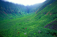 Aerial view of a valley along the north coast of Molokai, near the Kalaupapa peninsula.