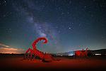 Ricardo Breceda's Scorpion<br /> Borrego Springs, CA