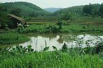 GREEN PASTURE AND HILLS WITH POND IN THAILAND