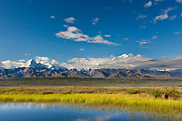 The Alaska Range mountains and the summit of Mt. Denali, north america's largest mountain, reflects in a small tundra pond, Denali National Park, Interior, Alaska.