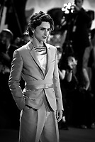"""VENICE, ITALY - SEPTEMBER 02: Timothée Chalamet attends """"The King"""" red carpet during the 76th Venice Film Festival at Sala Grande on September 02, 2019 in Venice, Italy."""