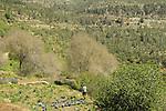 Israel, Jerusalem mountains, a view of Sataf