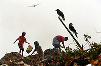 Children pick over the surface of the Kajla rubbish dump in search of saleable items, as scavenging birds wait nearby.  The Kajla rubbish tip is one of three landfill sites in this city of twelve million people.  Around 5,000 tonnes of garbage are dumped here each day and over a thousand people work among the rubbish, sorting through the waste and collecting items to sell to retailers for recycling.