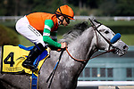 ARCADIA, CA - FEBRUARY 10: Unique Bella #4 with Mike Smith drive off the turn in the Santa Maria Stakes at Santa Anita Park on February 10, 2018 in Arcadia, California. (Photo by Chris Crestik/Eclipse Sportswire/Getty Images)