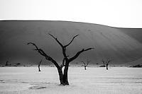 Sossusvlei and Deadvlei, Namibia