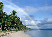 Recife, Pernambuco, Brazil. Palm-fringed beach with a rainbow.
