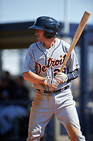 Detroit Tigers Will Maddox (29) bats during a minor league Spring Training game against the New York Yankees on March 22, 2017 at the Yankees Complex in Tampa, Florida.  (Mike Janes/Four Seam Images)